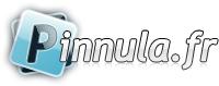 logo Pinnula.fr