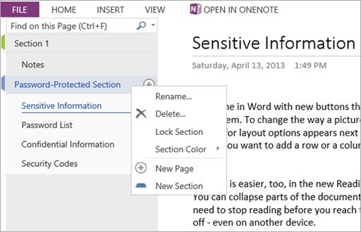onenote-web-app-editsectiontab-may-2013
