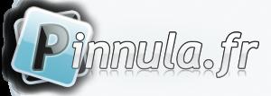 logo_pinnula