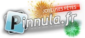 pinnula-joyeuses-fates