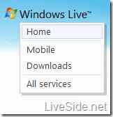 windows-live-wave4-header-leak-2